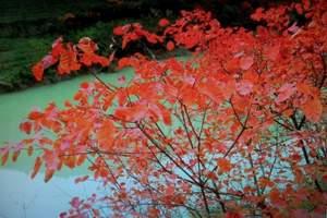 【宝鸡红色旅游】宝鸡扶眉战役馆、黄柏塬皂角村红色遗址二日游