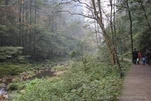 张家界金鞭溪