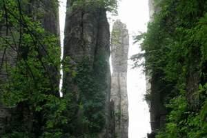 恩施(大峡谷、腾龙洞+土司城、坪坝营4个精华景点)3日游