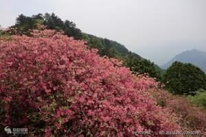 永州旅游 永州柳子庙、潇湘古城、阳明山国家森林公园休闲二日游