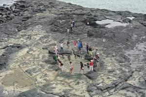 泉州到漳州火山地质公园(火山岛)、赵家堡休闲一日游