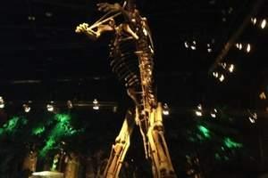 常州市环球恐龙城休闲旅游区