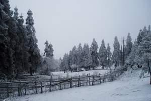 阿坝茂县九顶山太子岭滑雪一天多少钱 四川滑雪新去处推荐 东藏