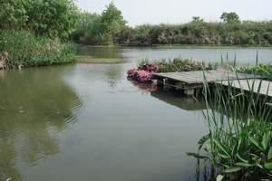 秋季合肥到杭州西湖、南浔古镇、西溪湿地、夜游西塘纯玩2日游