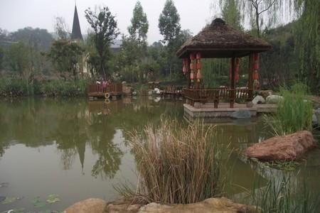 中国脐橙第一乡(三溪油菜花)、五凤溪古镇一日游【金堂五凤溪】