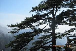 合肥出发至黄山汽车2日跟团纯玩游/住宿山上天气允许,可观日出