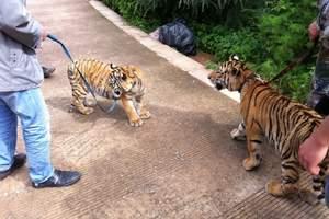 南宁广州长隆野生动物园、长隆欢乐世界高铁三日游纯玩团