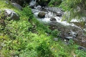 新疆天山大峡谷一日游(天天发团)