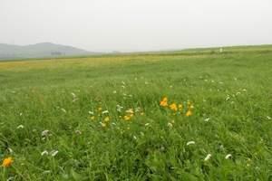 承德坝上草原风景
