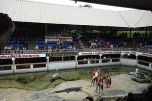 泰国水族馆