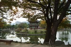 韩国哪里好玩 青岛到韩国首尔、济州岛、明洞四飞五日游