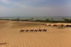 【乌鲁木齐到库姆塔格沙漠一日游】<乌鲁木齐吐鲁番动车一日游>