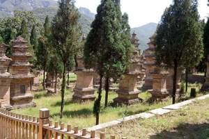 西安去河南少林寺一日游多少钱 塔林三皇寨   纯玩的 品质高
