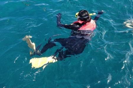 西澳大利亚琼斯---青岛去西澳大利亚珀斯自由行