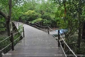 演丰红树林