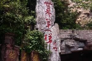 宜昌到张家界旅游_宜昌出发张家界森林公园四日游