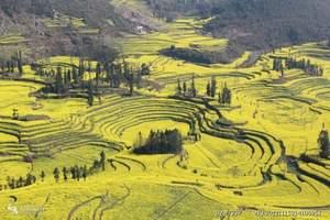 东川红土地、陆良彩色沙林、罗平油菜花、城子古村、弥勒6天游
