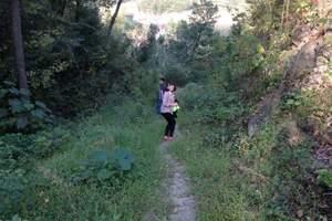陕西周边旅游线路 陕西周边旅游线路推荐 祥峪森林公园一日游