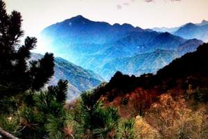 【宝鸡一日游】11月太白山森林公园赏红叶一日游_报价_攻略