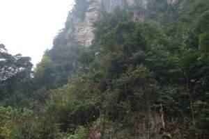 张家界天门山/森林公园/凤凰古城/苗寨/民族特色餐双飞六日游