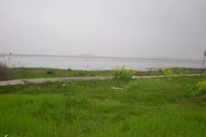 武汉到梁子湖旅游 梁子湖赏千亩油菜花海+花博园一日游