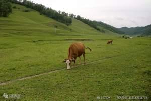 十一国庆节西安周边旅游线路 国庆黄金周西安到关山牧场二日游