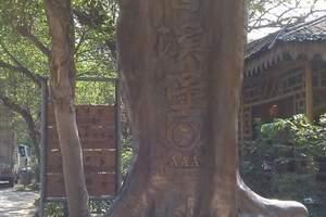 公司包团、公司惠州龙门塔山森林公园、瑶族风情园、香溪古堡2天