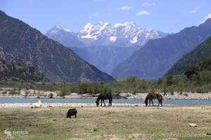 西藏林芝巴松措