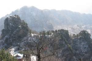 黄石到河南黄柏山+狮子峰360°天空之镜纯玩二日游