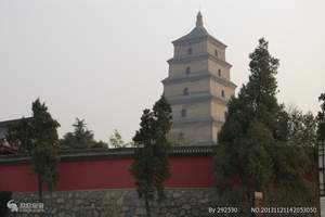 【西安全景深度旅游】西安延安华山兵马俑完美五日游