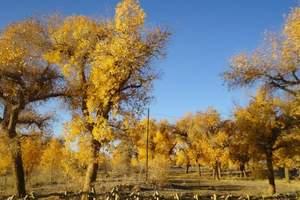 兰州、嘉峪关、额济纳胡杨林、巴丹吉林沙漠四日游
