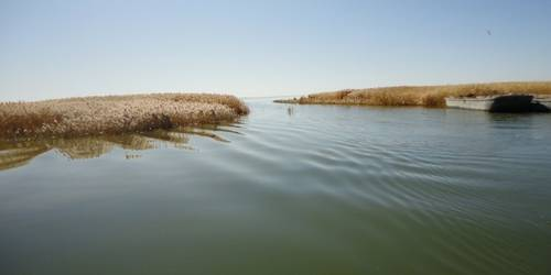额济纳天鹅湖