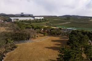西安到日本韩国旅游费用 日韩连线10天纯玩无自费