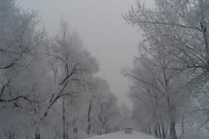 带孩子体验一个有雪的冬季:寒假每周三呼伦贝尔双飞五日游旅行g