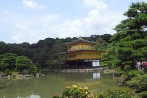 日本大阪+京都+东京深度5晚(4星,东京自由双温泉 双乐园)