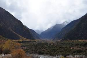 西藏林芝波密