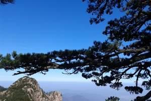 深度体验黄山:苏州到黄山观日出、游西海大峡谷三日,2晚住山顶