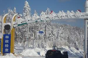 哈尔滨到亚布力、雪乡2日游天天发团(品质团)