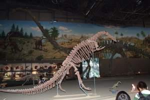中国西峡恐龙园