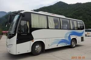 31+2座金龙空调旅游汽车800元/天(省内净价)