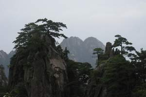 元旦北京到黄山旅游线路推荐 黄山观日出+绩溪千岛湖双卧6日