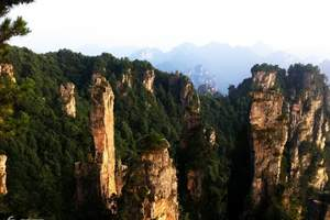 大峡谷玻璃桥+张家界森林公园+天门山+凤凰古城四日游0购物