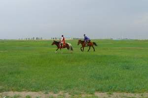 内蒙古旅游接待呼和浩特2日游_希拉穆仁草原、庫布齊沙漠二日遊