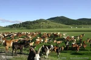 西安到宝鸡关山牧场二日游/关山牧场旅游