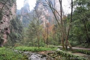 淄博去长沙韶山、张家界宝峰湖、土家风情园、凤凰古城双飞五日