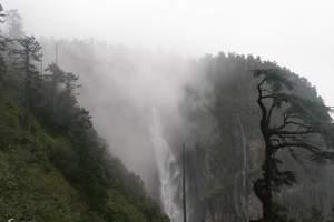 瓦屋山国家森林公园门票预订