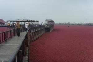 红海滩一日游_盘锦红海滩一日游_辽宁国际商务旅行社