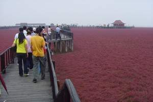 长春到鲅鱼圈+红海滩旅游  长春到红海滩+鲅鱼圈2日游旅游团