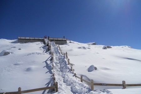 宜宾出发【欢乐滑雪季-鹧鸪山自然公园2日游
