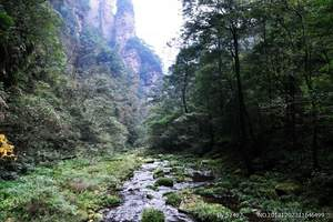 淄博到张家界旅游团 淄博旅行社到长沙韶山、张家界特价双卧六日